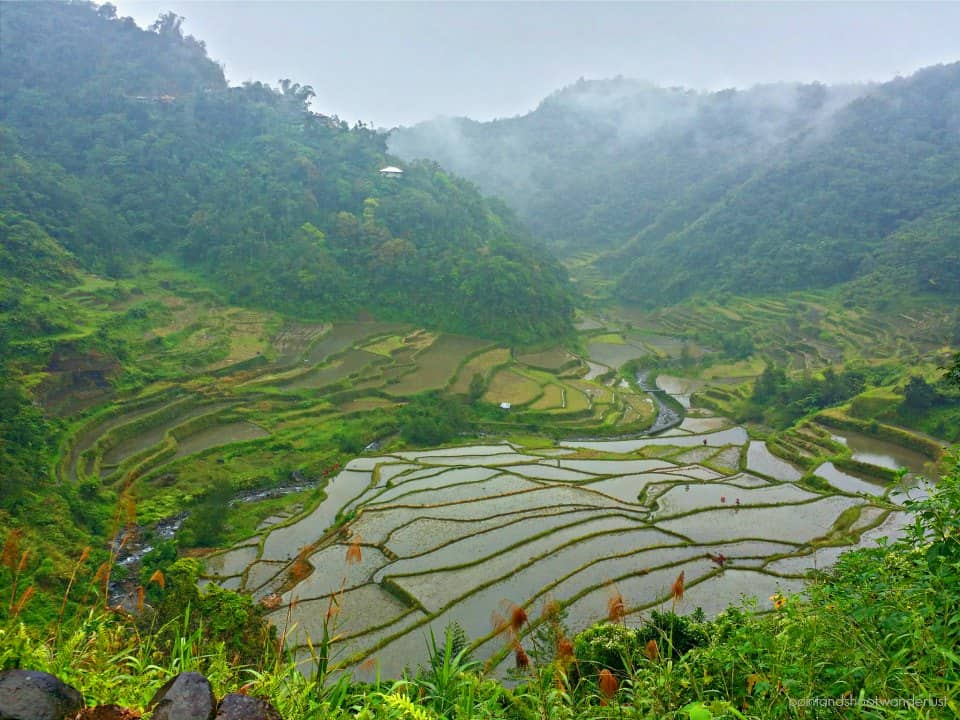 terraces on the way to batad