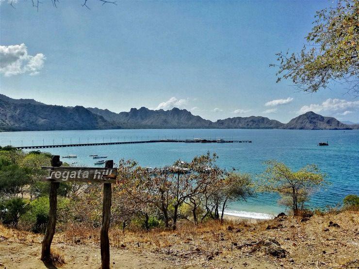 Komodo Island Fregata hill