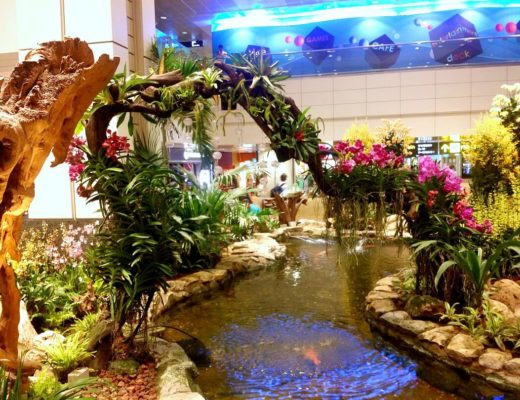changi airport singapore orchid garden