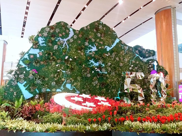 changi airport singapore at 50