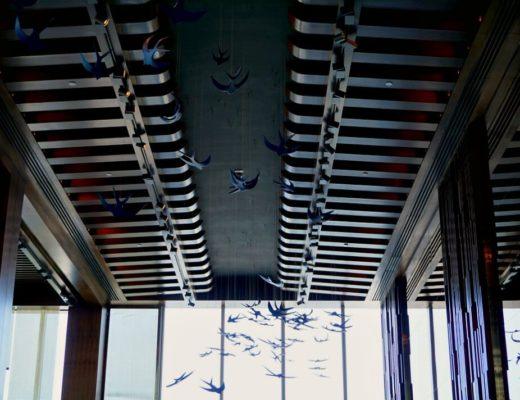 zengo doha qatar ceiling