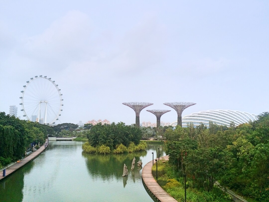 Travel Notes: Singapore in 3 days with locals + photos to make you want to visit