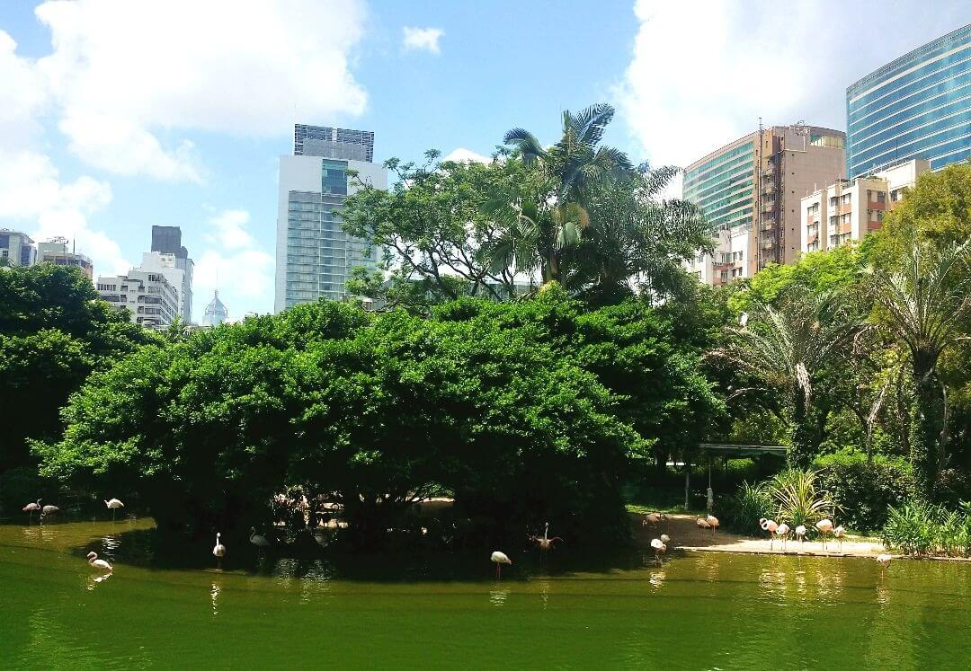 Here's why you should add Kowloon Park to your Hong Kong itinerary!